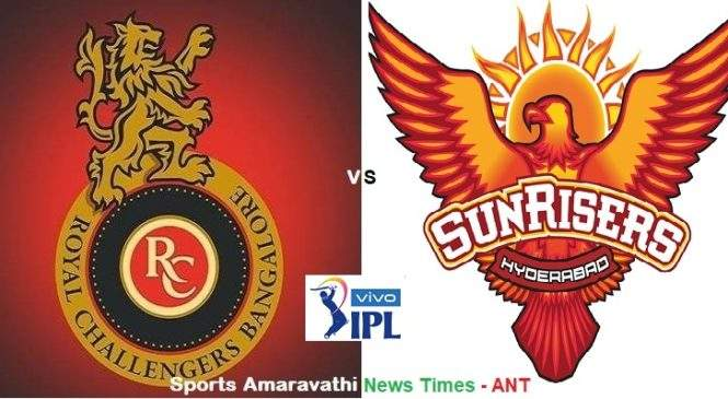 Vivo IPL 2019 RCB vs SRH Match 54 | Cricket News Updates